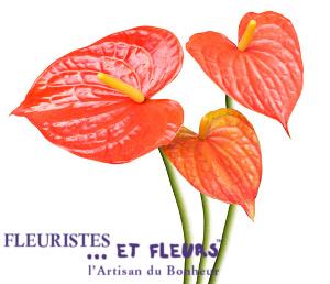 Astrologie de la fleur le scorpion et l 39 anthurium for Fleuristes et fleurs
