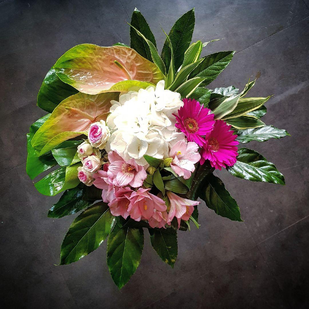 Cr ation florale en direct meilleur prix qualit fleuriste for Fleuristes et fleurs