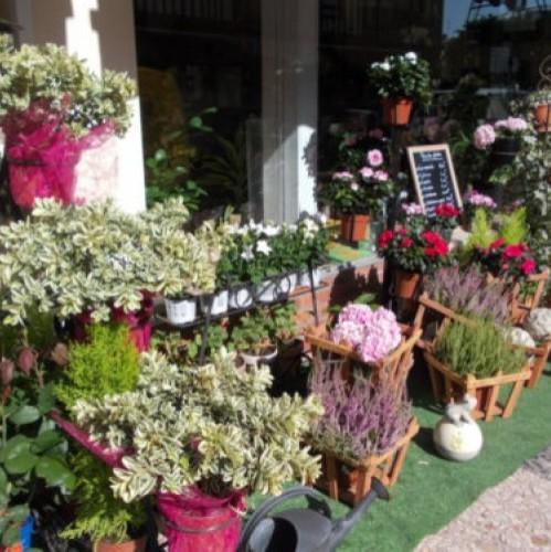 artisan fleuriste deauville baccara 14 envoyer des fleurs. Black Bedroom Furniture Sets. Home Design Ideas