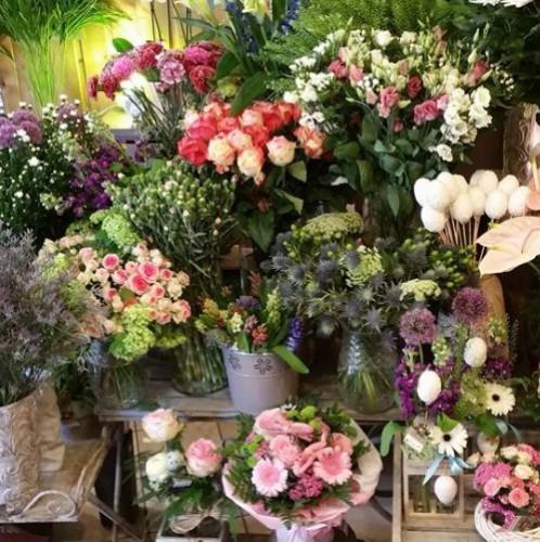 Fleuristes à La Ferté Bernard