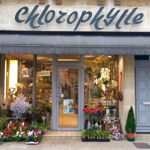 artisan fleuriste bar le duc chlorophylle 55 envoyer des fleurs. Black Bedroom Furniture Sets. Home Design Ideas